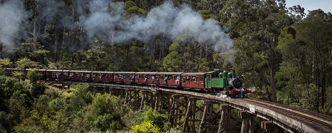 Amazing Australia Dreamland Tangalooma + Puffing Billy Train & Indoor Skydiving