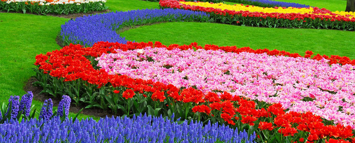 Favorite West Europe + Keukenhof