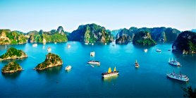 Favorite Vietnam + Ha Long Bay Cruise, Vung Tau & My Tho Tour
