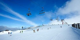 Favorite Australia Dreamland Tangalooma + Blue Mountain & Mt. Buller Snow