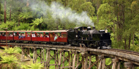 Favorite Australia Dreamland Tangalooma + Phillip Island & Puffing Billy Train