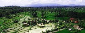 Lihat Bali With Culture Package