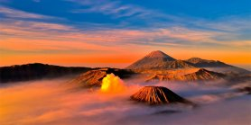 Lihat Bromo - Ijen Blue Fire - Baluran Safari Tour