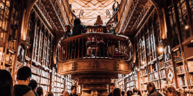 Favorite Portugal And Library Of Harry Potter
