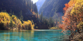 Explore Winter Jiuzhaigou