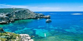 Lihat Perth Rottnest Island Grand Tour