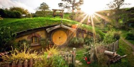 Favorite New Zealand Kiwi + The Hobbiton