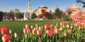 Super Sale Turkey + Hagia Sofia & Tulip Festival