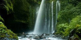 Lihat Daily Tour Lombok Sendang Gile Waterfall