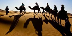 Lihat Dubai Tour With Desert Safari